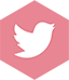 Twitter Rose